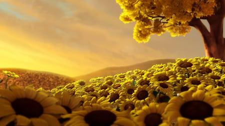 Sunflowers - flowers, hills, sunflower, petals, sunflowers, tree, nature