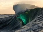fantastic green wave