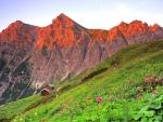 austrian alps in spring