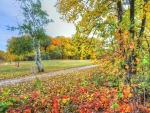 autumn in the park hdr