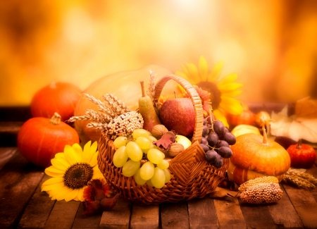 Autumn Still Life - wheat, grapes, still life, fruit, leaves, sunflowers, flowers, wood, corn, apple, walnuts, pear, gourds, nuts, basket, vegetables, pumpkins