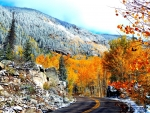 Colors of Aspen Colorado