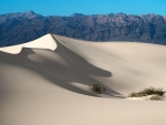 mesquite flat sand dunes in death valley ca