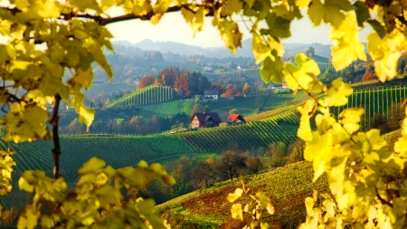 Lovely view - hills, fall, autumn, view, houses, beautiful, trees, foliage, leaves, village, branches, field