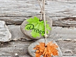 *Dream...Believe...*