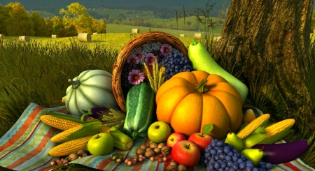 Autumn Harvest - Fall, hazelnuts, grass, wheat, grapes, fruit, Thanksgiving, flowers, fields, corn, hills, walnuts, apples, hay, trees, squash, nuts, pears, basket, Autumn, vegetables, Zucchini, pumpkins