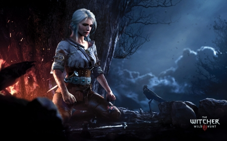 The Witcher 3 Wild Hunt - games, Witcher, wild, xbox, hunt, one, video, 3
