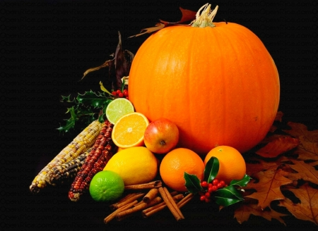 Autumn Still Life - apple, corn, Fall, cinnamon, holly, oranges, lime, fruit, leaves, Thanksgiving, berries, pumpkin, lemons, Autumn