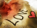 *Romantic*