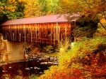Covered bridge in autumn forest
