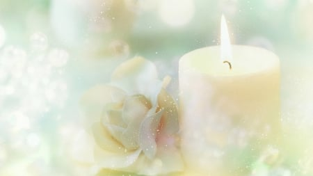 Candle and Rose - candle, Christmas, glow, rose, New Year, soft, sparkle, sprinkle, flowers, pastel, star dust, celebrate