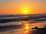 Beach Sunset,California
