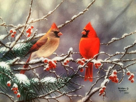 Winter cardinals birds animals background wallpapers - Pictures of cardinals in snow ...