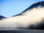 covered bridge in morning fog