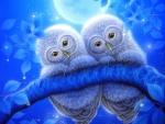 Moonlight Owls