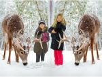 Reindeer Love & Joy