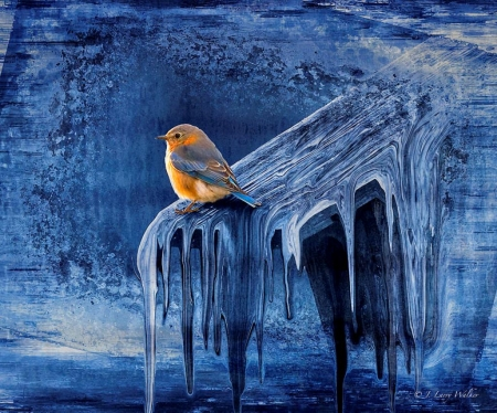 Cold Winter Morning - bird, snow, painting, ice, blue, frost