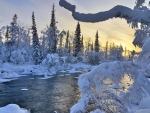 Riverside Winter