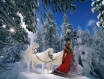 Snowy Trees Amongst Lady and White horses