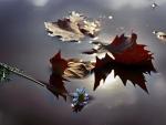 Leaves & Flower