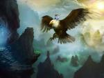 Flight on an Eagle