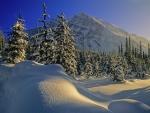 Boom Lake, Banff NP