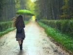 *Rain*