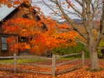 Wooden house in autumn