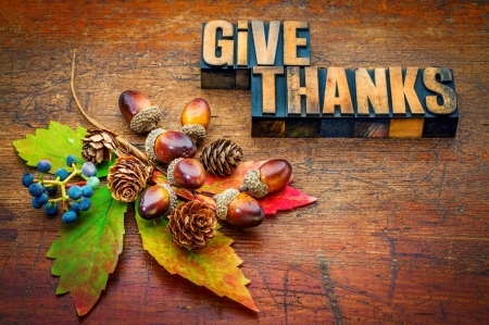 Thanksgiving day 3d and cg abstract background - Thanksgiving day wallpaper 3d ...