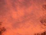 Red Sky in November