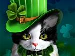 St. Patrick cat