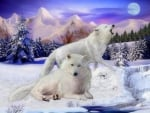 Snow Wolves of the Wild
