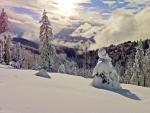 Sierra Nevada in Winter