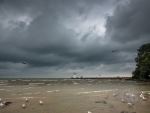 storm clouds over seabirds on a beach