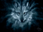 The Spirit of a Wolf