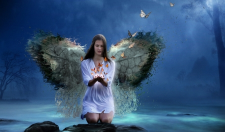Dreams - dreams, wings, butterflies, woman