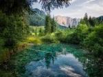 Amazing Nature -Austria-
