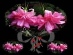 flowers,pink,black,color,