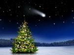 Christmas tree under the starry sky