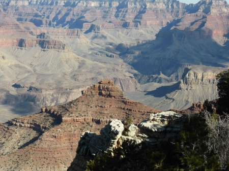 Grand Canyon - fun, desert, cool, canyon, nature
