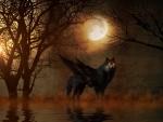 Fantasy wolf at Moonlight Night