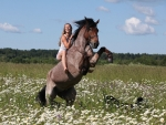 Cowgirl Wild Ride