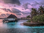 marvelous exotic cottages in the tropics hdr