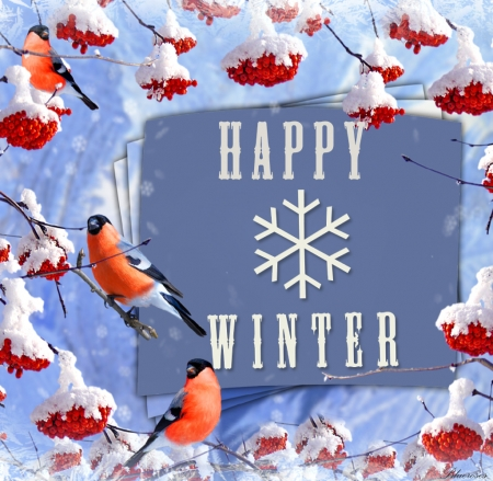 *HAPPY WINTER* - message, snow, welcome winter, birds, season, happy winter, winter