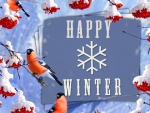 *HAPPY WINTER*