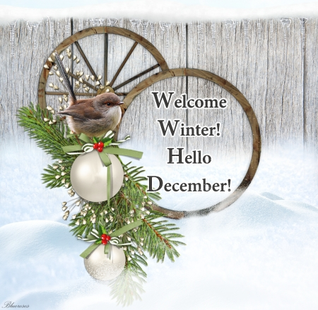 *Welcome Winter*Hello December* - christmas, december, welcome, winter, balls, bird, snow, hello, sparrow, season, wooden fence