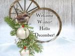 *Welcome Winter*Hello December*