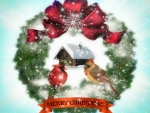 Merry Christmas ♥♥