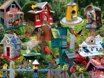 Birdhouse Village F