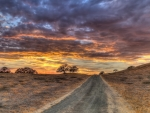 wonderful sky over a country road hdr
